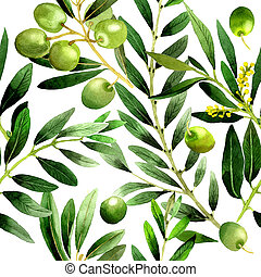 Olive tree pattern in a watercolor style isolated. Full name...