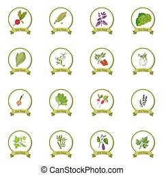 Eco foods set - Eco foods. Hand drawn vegetable set. Vector...