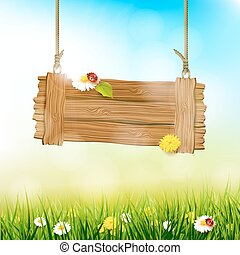 Spring sunny background - Spring background with flowers in...