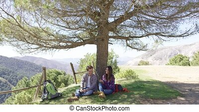 Couple under big wonderful tree - Big beautiful tree with...