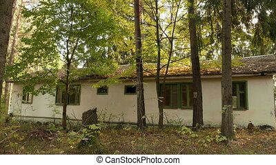 Abandoned housing in the forest. Autumn daytime. Smooth dolly shot