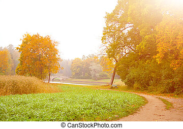 Autumn landscape 4 - Autumn landscape with path and sun at...