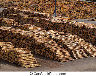 Wooden logs in a lumber yard