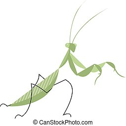 Mantis in an attacking pose, minimalist image on white...