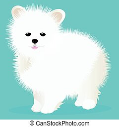 Spitz dog white vector illustration
