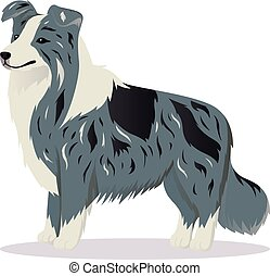 Border Collie dog marble vector illustration