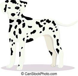 Dalmatian dog vector illustration
