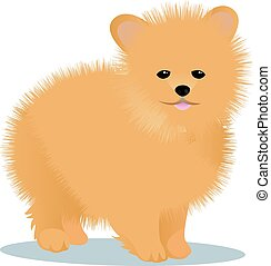 Spitz dog vector illustration