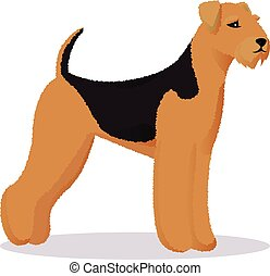 Airedale dog vector illustration