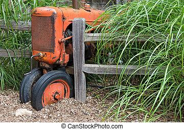 arancia, vendemmia, fattoria, trattore