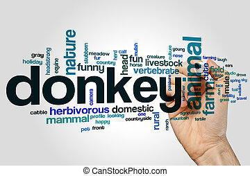 Donkey word cloud concept on grey background.