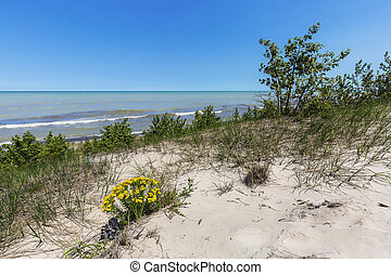Sand Dune Ridge looking out over Lake Huron - Pinery...