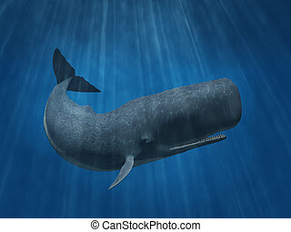 Sperm Whale - 3D render depicting a sperm whale undersea.