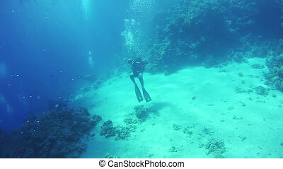 Scuba diver entering an underwater cave. Red Sea, Egypt. -...