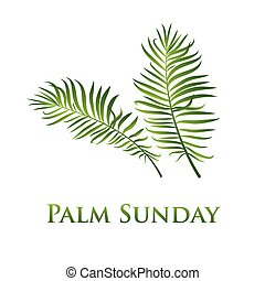 Palm leafs vector icon. Vector illustration for the...