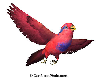 Red and Blue Lory Flying - 3D render depicting a Red and...