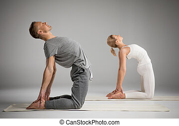 Couple standing in yoga pose - Couple practicing yoga...