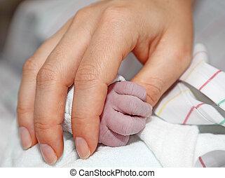 recién nacido, bebé, asideros, madres, mano
