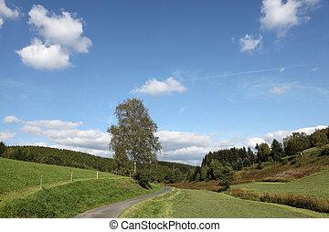 piękny, krajobraz, Siegerland, Północ, Rhine-Westphalia,...
