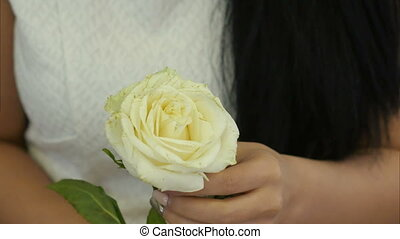 Female hands touching white rose. Close up. Professional...