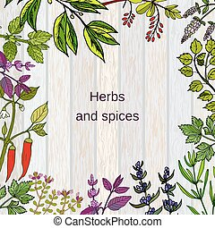 Frame with hand drawn culinary herbs and spices. Vector...