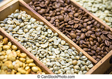 coffee beans showing various stages of roasting from raw through to Italian roast