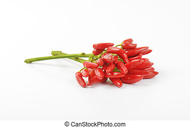 Fresh tabasco peppers - Bunch of fresh red chili peppers on...