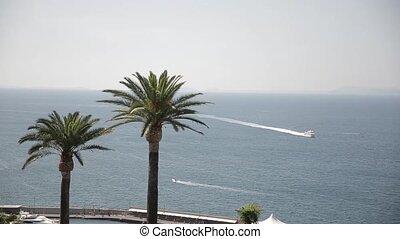 sailboats beautiful summer day sea water