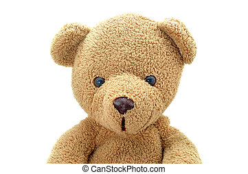 Portrait brown teddy bear doll looking to camera.