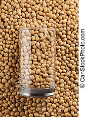 soy bean - stock image of the soya bean