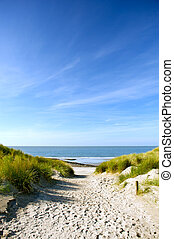 Beach and sand dunes - beach with sand dunes and a path to...