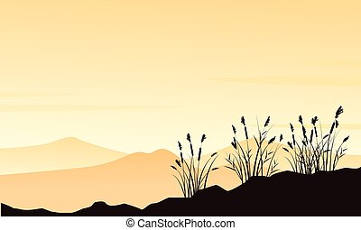 Silhouette of mountain with course grass landscape