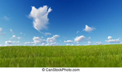 Grass blowing over blue sky