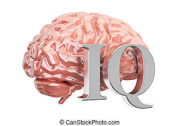 Human brain and IQ text, 3D rendering