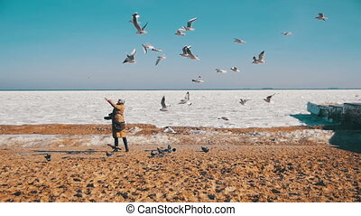 Woman Feeds the Hungry Seagulls Flying over the Frozen...