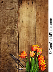 Antique Scissors and Tulips - Overhead shot of a bouquet of...