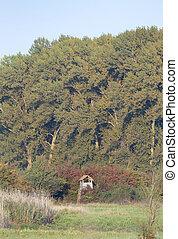 Watchtower in forest - Vertical image of watchtower hidden...
