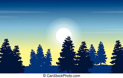 At morning spruce forest landscape