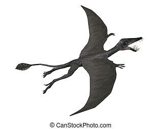 Dorygnathus in flight - 3D render depicting a Dorygnathus...