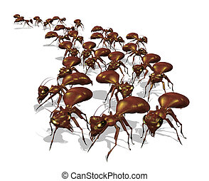 Army of Ants - Warning An army of ants is headed for your...