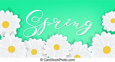 Spring background with hand writening lettering Spring word, white daisies or gerbers