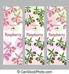 Herbal tea collection. Raspberry banner set