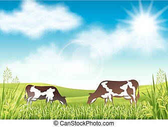 Cows grazing in a summer meadow - Vector illustration of cow...