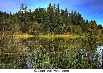 Ice House Lake with a nice reflection located north of...