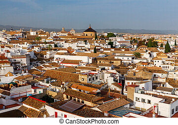 Cordova. Aerial view of the city. - A view from the air to...