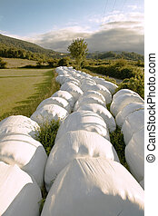 Hay balls in white plastic cover wrap bales stacked outdoor, for feeding animals in farms
