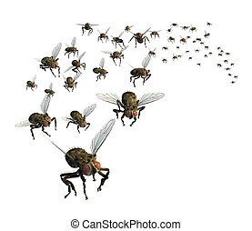 Swarm of Flies - 3D render of a swarm of flies - theyre...