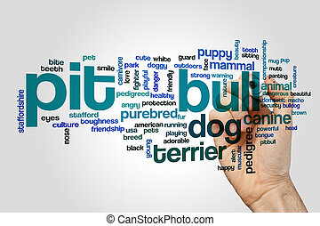 Pit bull word cloud concept