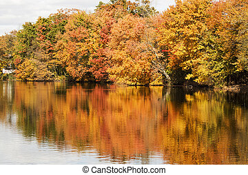 Colorfull fall leaves reflecting in Southards Pond