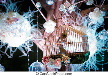 beautiful bird in cage at the night
